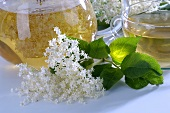 Elderflower tea with fresh flowers
