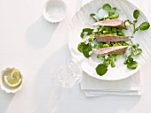 Lamb fillet on watercress and shelled beans