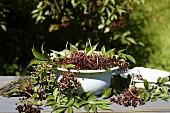 Dish of elderberries on a garden table