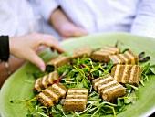 Taleggio slices on salad leaves