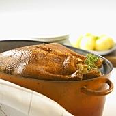 Stuffed goose in roasting dish