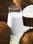 Coconut milk and grated coconut in half a coconut shell