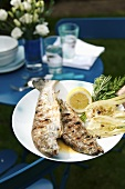 Two grilled trout stuffed with herbs