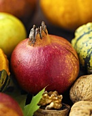 A pomegranate amongst ornamental gourds and walnuts
