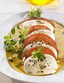Insalata caprese (Salat von Tomaten & Mozzarella, Italien)