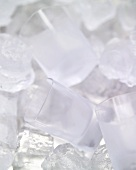 Vodka glasses among ice cubes