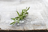 A sprig of rosemary on a wooden board