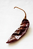 A dried chili pepper
