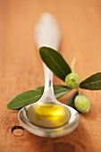 A spoonful of olive oil with an olive twig
