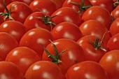 Tomatoes (macro zoom)