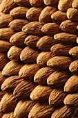 Almonds, macro zoom