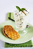Mint ice cream with chocolate chips