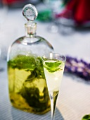 Vodka with lemon and lime juice and mint leaves