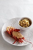 Grilled lobster with sauce and rice