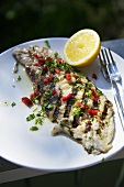 Grilled fish fillets with a pepper and herb marinade