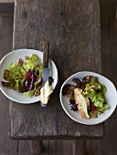 Two plates of oak leaf lettuce with red wine pears & Epoisses
