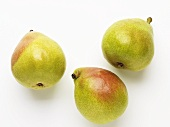Three Anjou pears