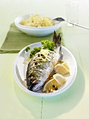Fried sea bass with gremolata and mashed potato