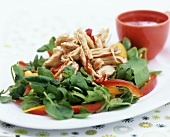 Strips of steamed chicken breast with pepper & cress salad
