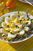 Hard-boiled eggs with mayonnaise on radish sprouts