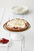 Rhubarb and raspberry flan with meringue topping