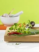 Herbs and chilli with mezzaluna