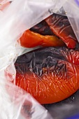 Grilled peppers in a plastic bag before being skinned