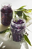 Pickling red cabbage in two screw-top jars