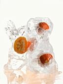Small Hokkaido pumpkins frozen in ice