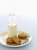 Ginger biscuits with raisins, a bottle of milk with a straw