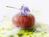 Molecular cuisine: tomato sphere with lavender on basil