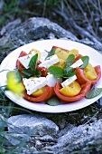 Tomato and peach salad with feta on stones out of doors