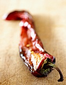 Grilled pepper half on wooden background