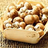 Fresh, dirty chestnut mushrooms in a wooden box