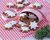 Cinnamon stars in upset gift box