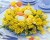An Easter arrangement of mimosa & narcissi with Easter eggs