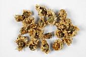 Several dried chrysanthemum flowers