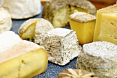 Various types of cheese on a board
