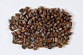 Semen Cassiae