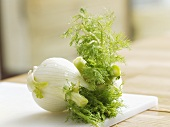 Two fennel bulbs