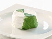 A fresh goat's cheese on a plate