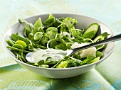 Green vegetable salad with minted yoghurt & soft cheese dressing