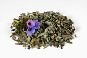 Dried lungwort with flowers