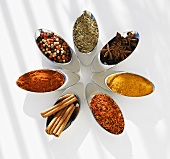 Seven different spices in small metal dishes