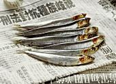 Seven sardines on Chinese newspaper