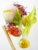Quail's egg with trout caviar and salad
