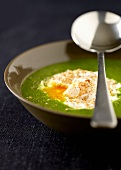 Herb soup with poached egg