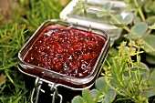 Cranberry compote in preserving jar among green plants