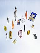 Fische und Fischprodukte hängen an Angelhaken