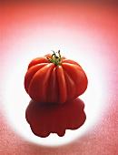 A beefsteak tomato (variety: 'Coeur de Boeuf')